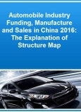 Automobile Industry Funding, Manufacture and Sales in China 2016: The Explanation of Structure Map- Product Image